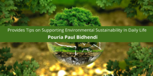 Pouria Paul Bidhendi Provides Tips on Supporting Environmental Sustainability In Daily Life